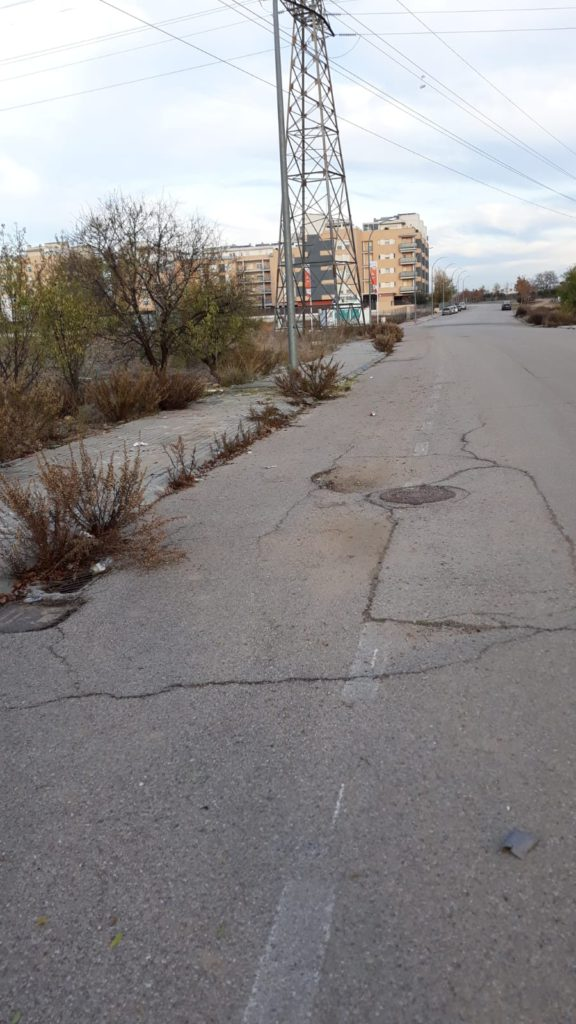 Vista del Olivar y estado de la calle